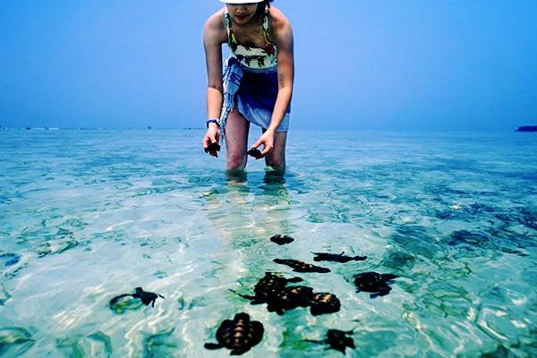Kepulauan Seribu – Maldiven van Java