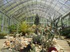 BaliBotanical Garden