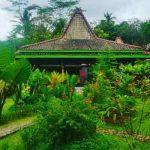 hotel near borobudur temple