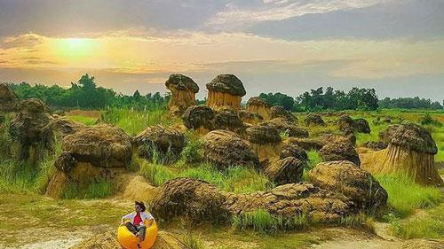 The Mushroom Hill