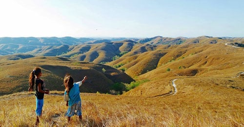 Wairinding Hill, Corrugated Hill in East Sumba