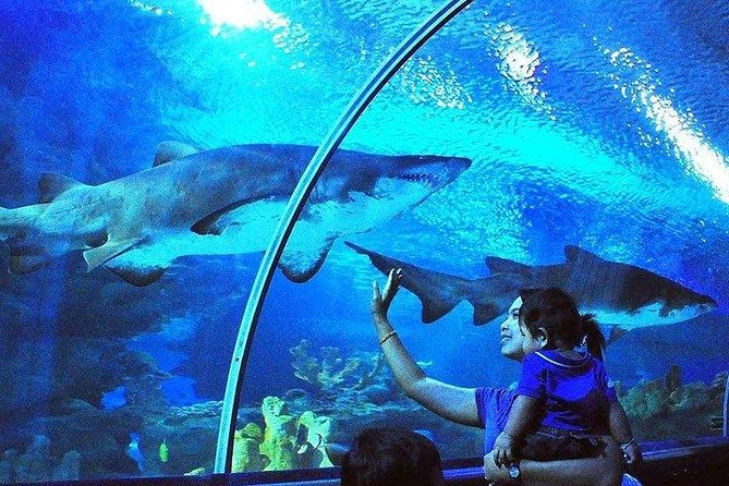Aquaria KLCC, World-class Educational Oceanarium