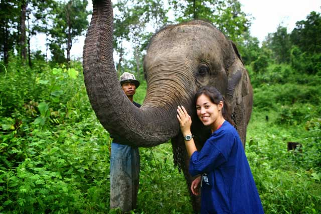 The Elephant Conservation Centre in Thailand